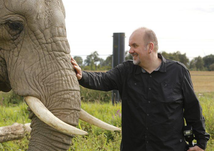 Hochzeitsfotografie mit Elefanten